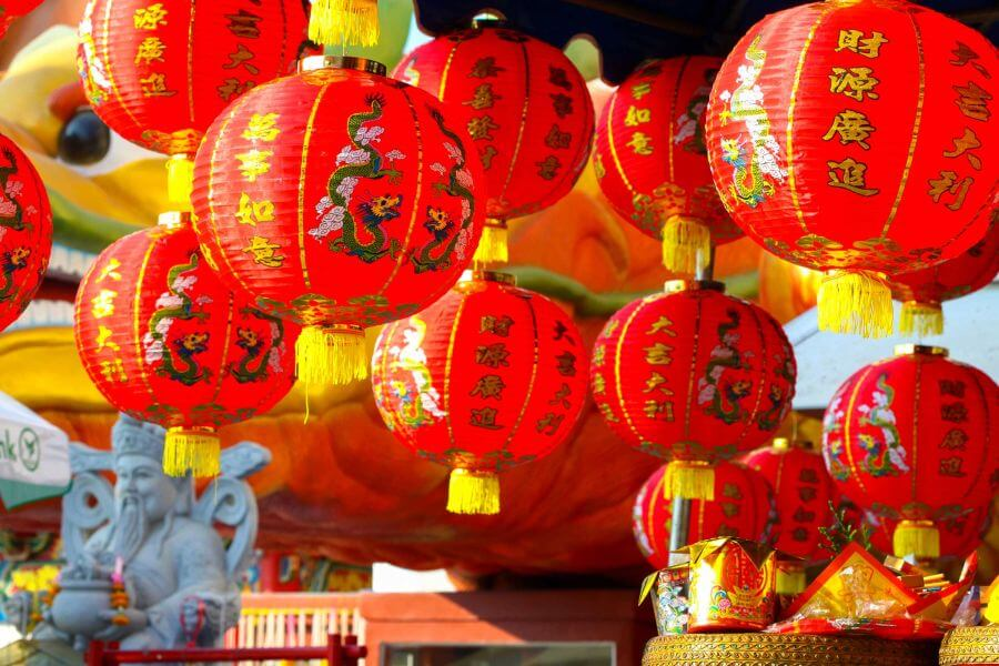 Logistics in Chinese New Year